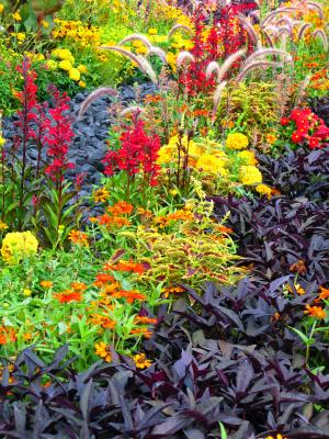 Garten und Landschaftsbau Werner