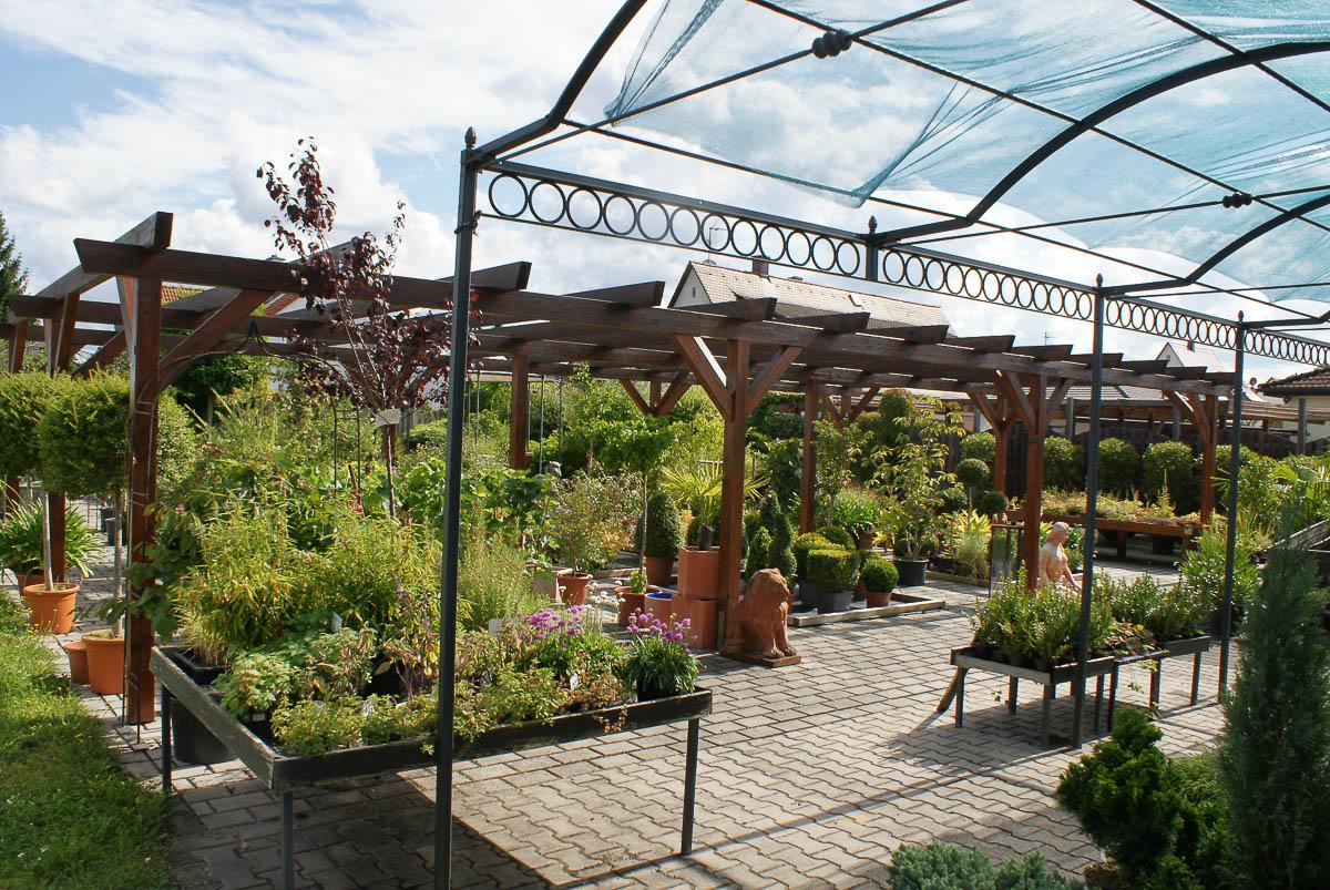 Gartenbaumschule - Blumen Werner - Ihre regionale Gärtnerei in Röthenbach Pegnitz