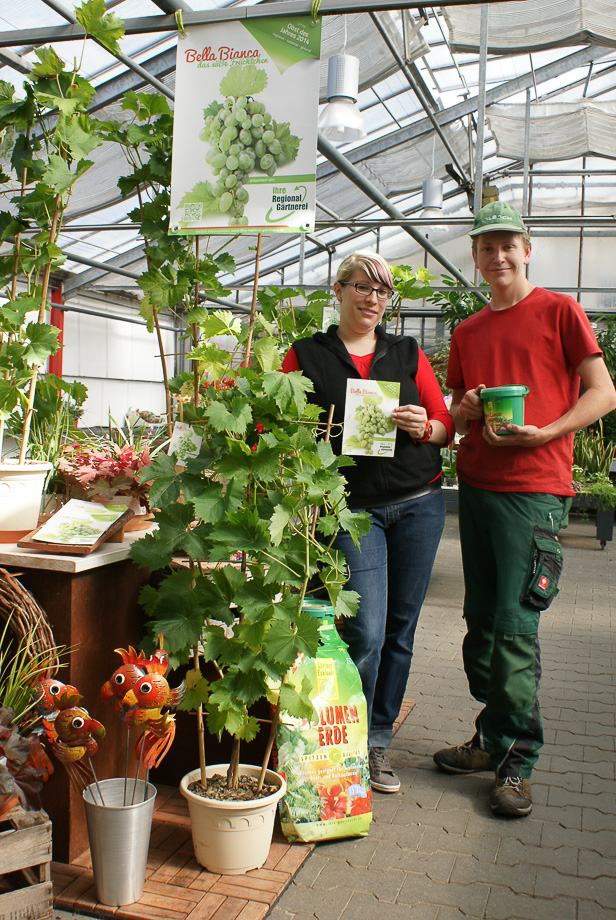 Blumen Werner - Ihre regionale Gärtnerei in Röthenbach Pegnitz