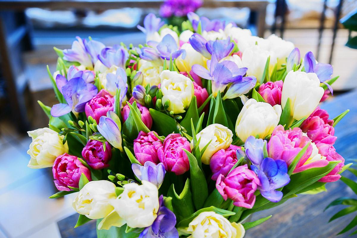 Floristik Frühling