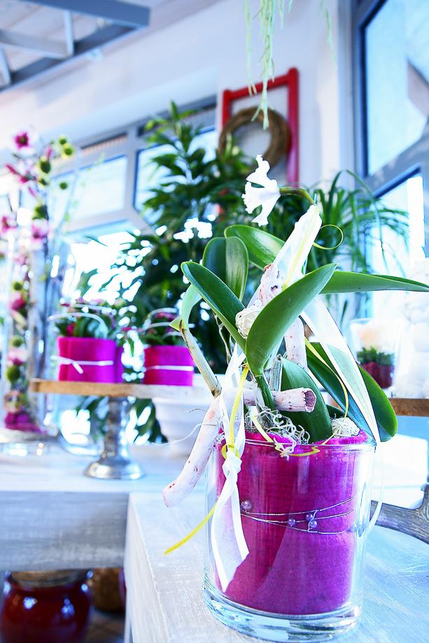 Vorfrühling Floristik Blumen