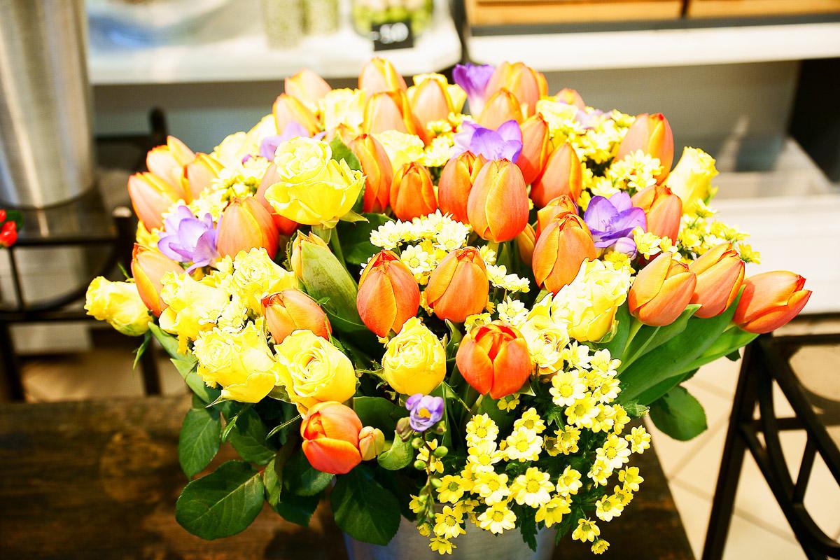 Vorfrühling Blumen