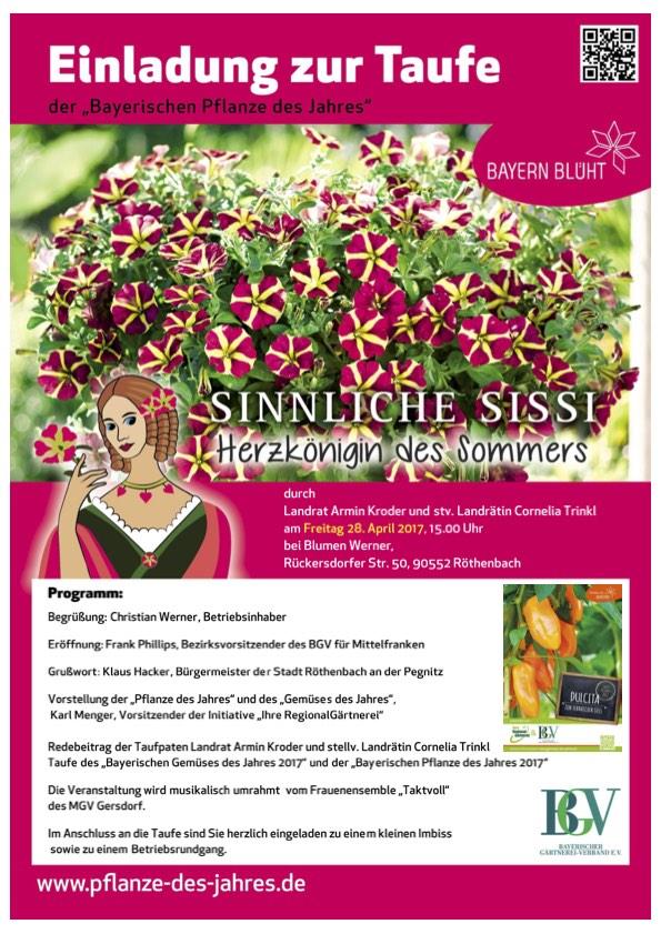 Events - Blumen Werner