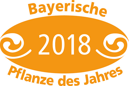 Bayerische Pflanze 2018